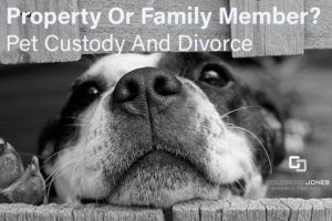 family law lawyers oakville